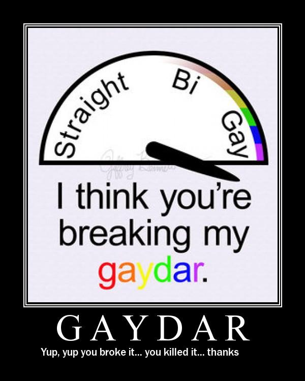 gaydar1.jpg