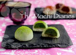 Mochi Diaries
