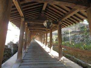 Steps of Hasedera.