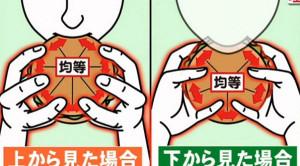 hamburger-diagram-2
